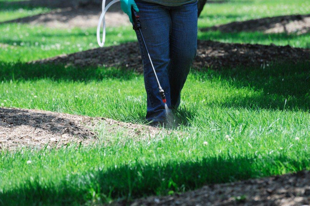 Fertilizer Application by Spray